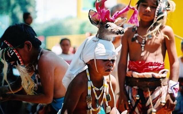 Yaquis, danza con lobos